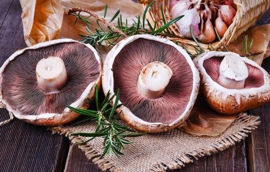 Balsamic Mushrooms with Rosemary