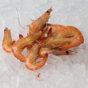 Endeavour prawns