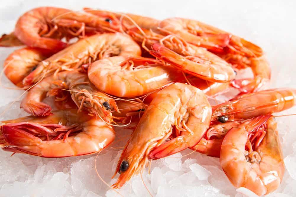 ocean-king-prawns