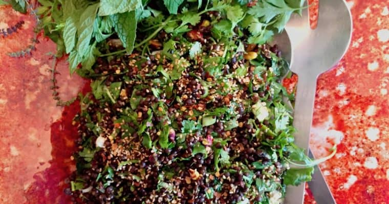 Black Lentil Salad – perfect for picnics