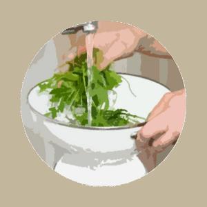wash herbs