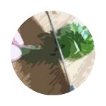 cartoon-basil chiffonade