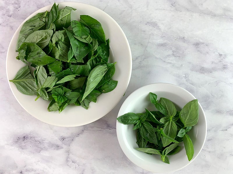 BASIL SPRIGS AND LEAVES IN WHITE BOWLS