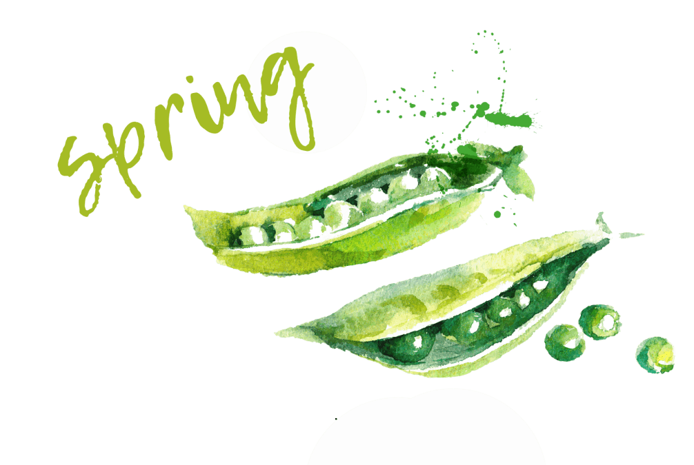 spring title watercolour green peas