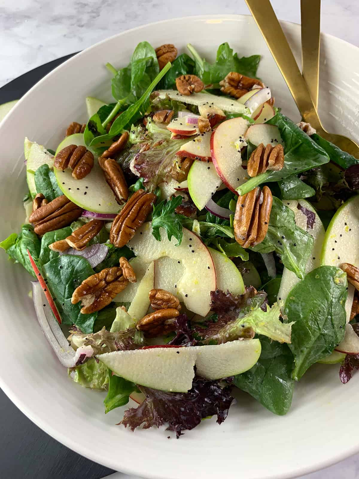 PORTRAIT CLOSE UP OF APPLE PECAN SALAD