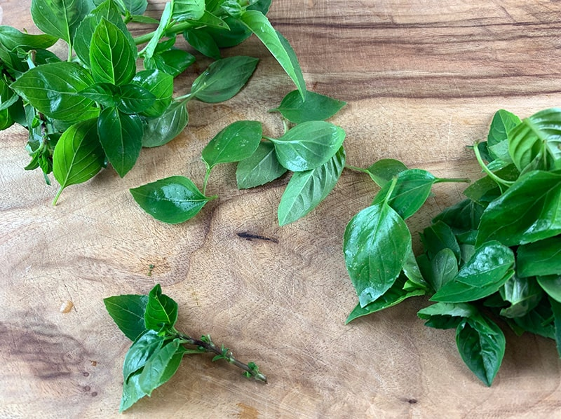 PICKING THE LEAVES FROM BASIL STEMS