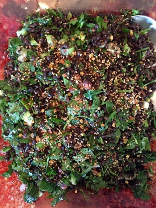 BLACK LENTIL SLAD WITH HERBS AND SEEDS