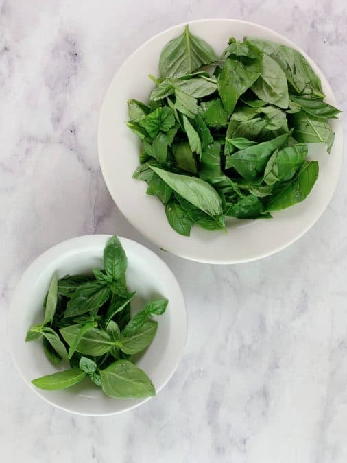 BASIL LEAVES IN BOWLS ON MARBLE BACKGROUND