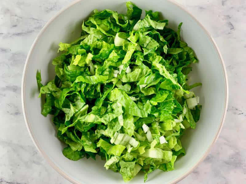 ADDING SHREDDED LETTUCE TO SALAD BOWL