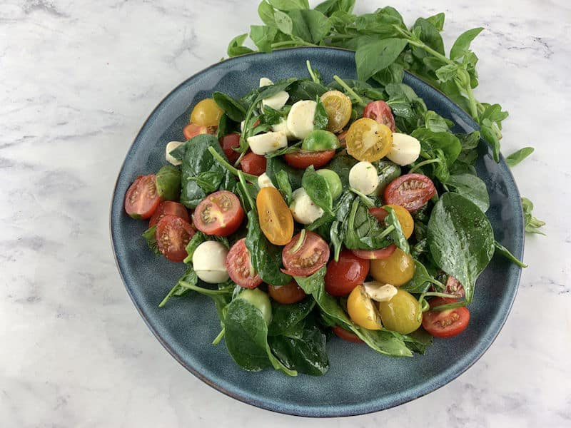 CAPRESE SALAD ON A BLUE PLATE WITH BASIL IN BACKGROUND