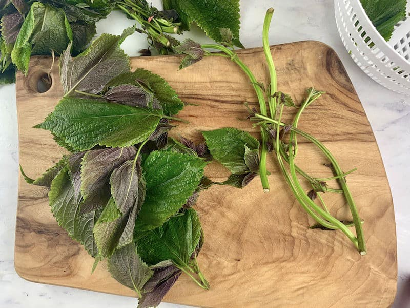 SHISO LEAVES STRIPPED FROM STEMS ON WOODEN BOARD
