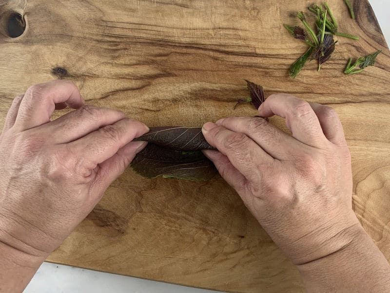 HANDS ROLLING SHISO INTO A CIGAR ON WOODEN BOARD