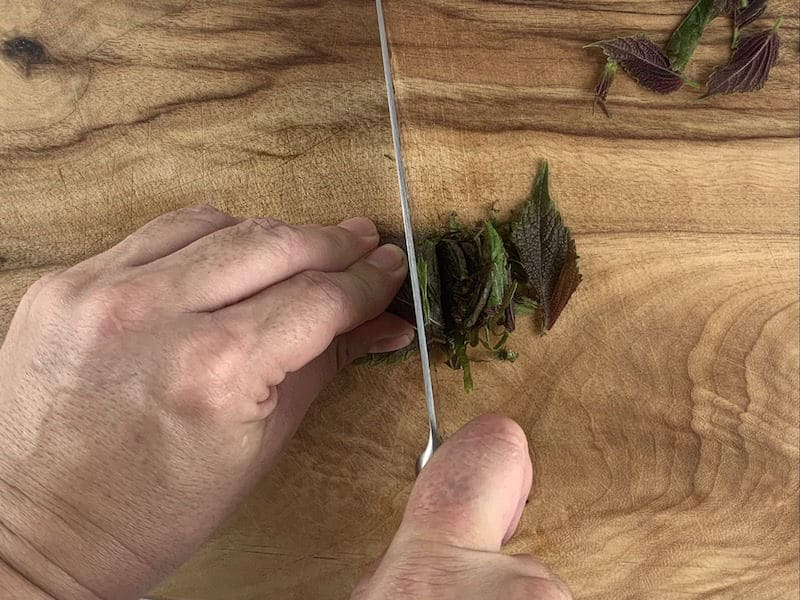 HANDS THINLY SLICING SHISO ON WOODEN BOARD