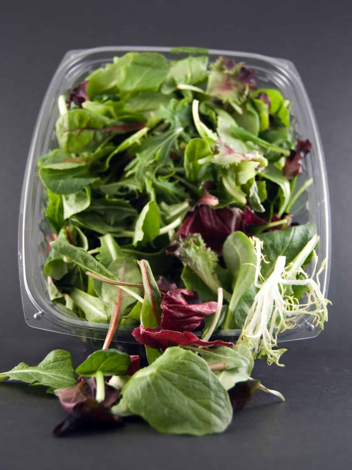 Pre packed salad leaves In plastic container